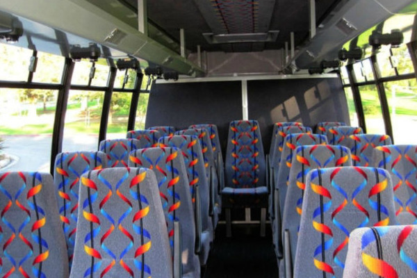 20 person mini bus rental Commercial Point