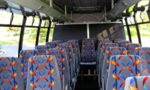 20 person mini bus rental Gahanna