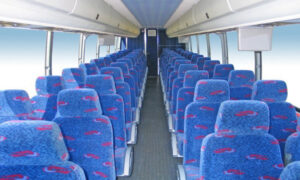 50 person charter bus rental London